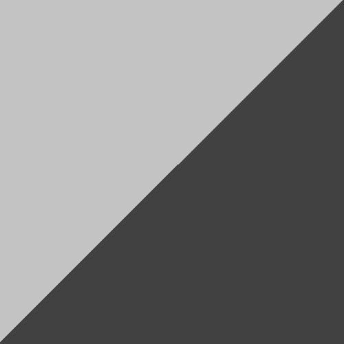 C20 Gris/Noir
